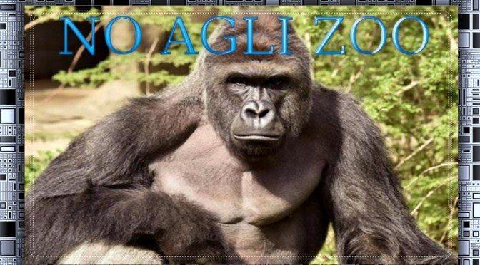 NO agli zoo